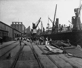 Millwall Dock on the quayside